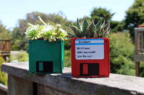 DIY 廢物利用 – 小盆栽製作