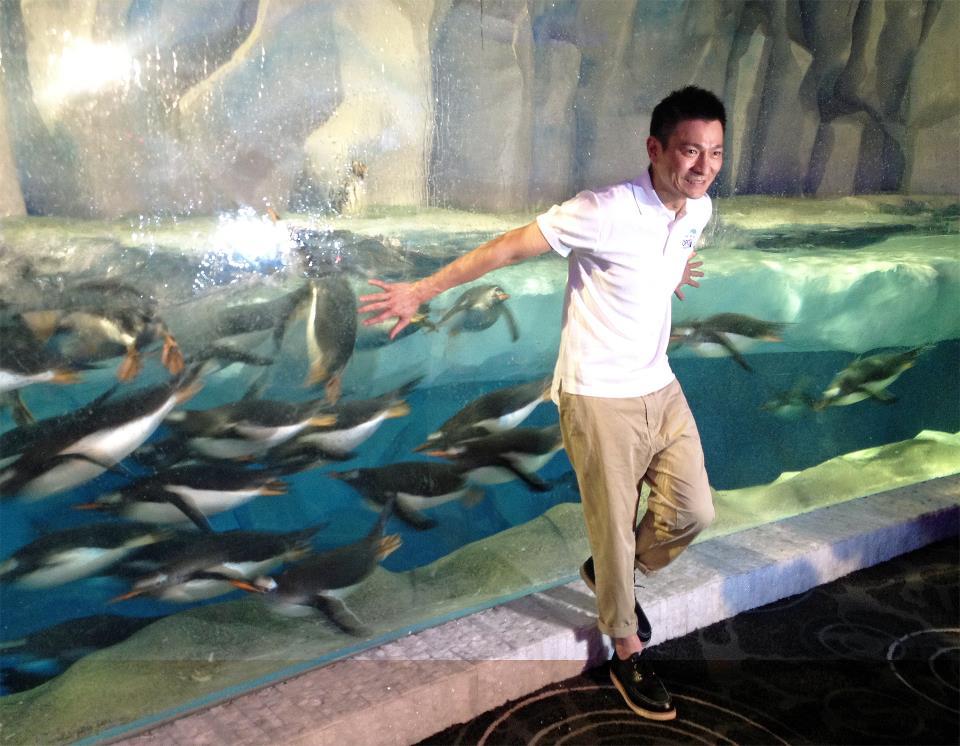 海洋公園「冰極天地」今日正式開幕!