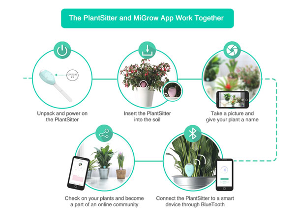 PlantSitter02
