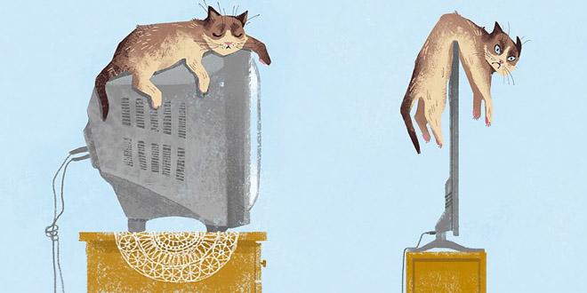 唔講唔知!科技改變貓星人的十種生活小事