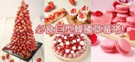 士多啤梨甜品Buffet 必食巨型韓國草莓塔