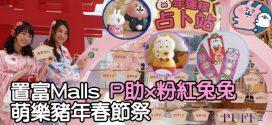 置富Malls x Kanahei's Small animals萌樂豬年春節祭